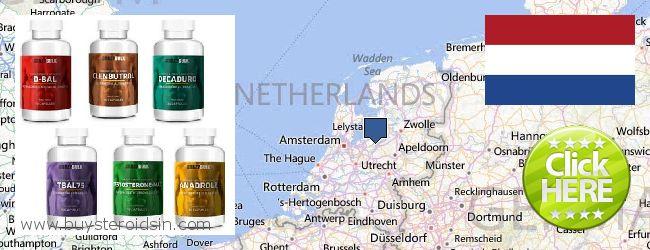 哪里购买 Steroids 在线 Netherlands