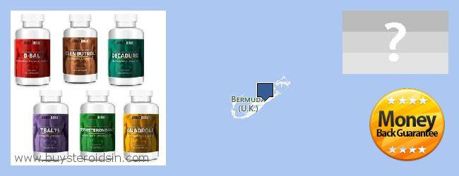 Waar te koop Steroids online Bermuda