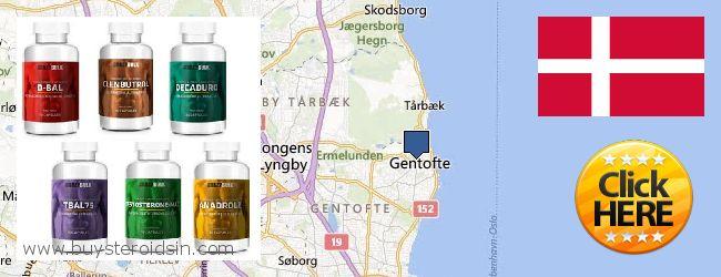 Where to Buy Steroids online Gentofte, Denmark